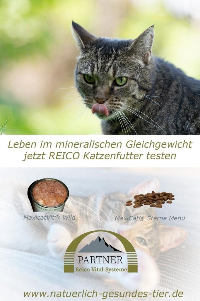 Reico-Katzenfutter - Leben im mineralischen Gleichgewicht