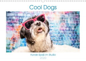 Hunde-Kalender 2020