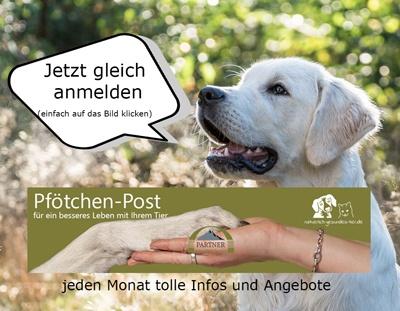 Pfötchen-Post für Hundefreunde