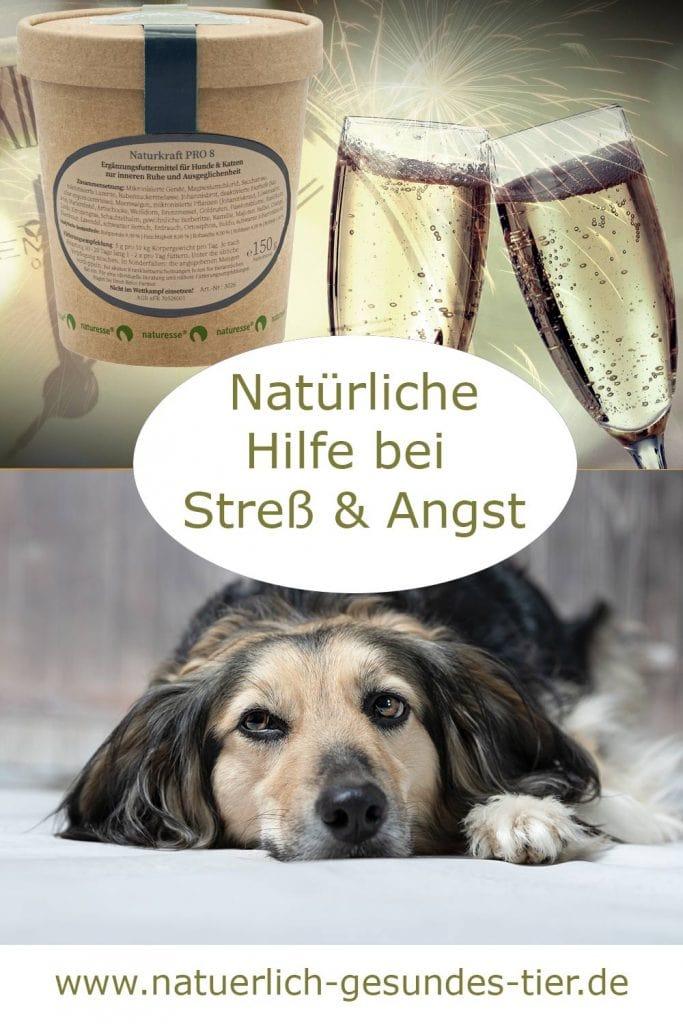 Naturkraft Pro 8 für Hunde