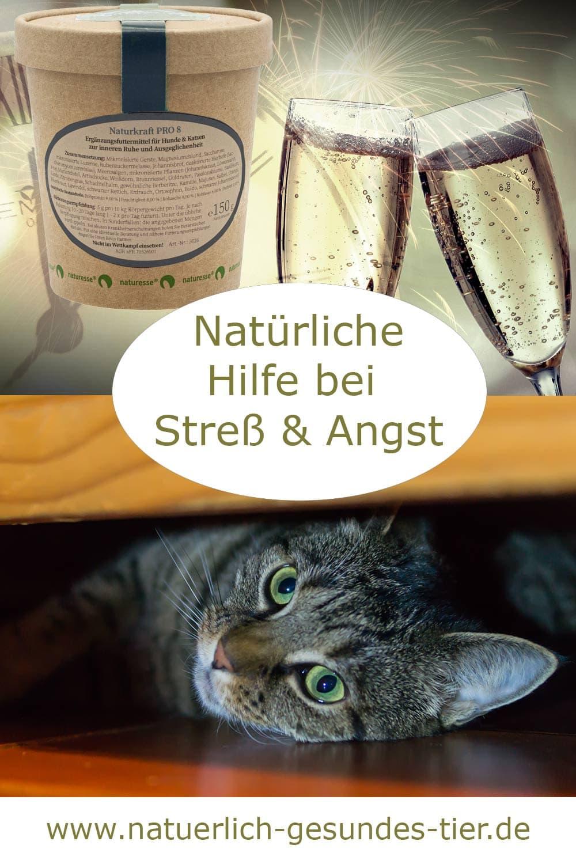 Naturkraft Pro 8 für Katzen