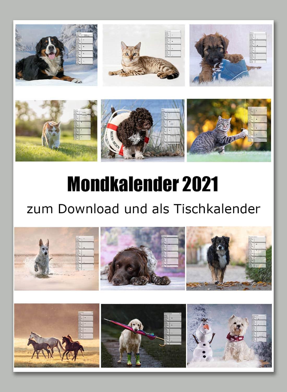 Vorschaubilder Mondkalender 2021