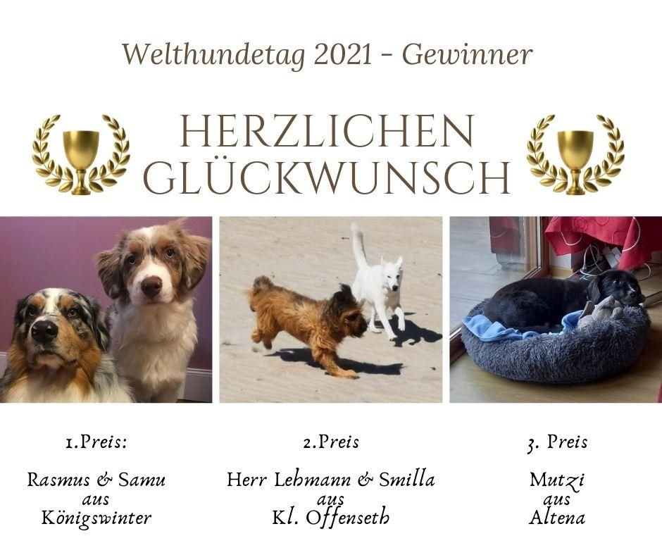 Gewinner zum Welthundetag 2021